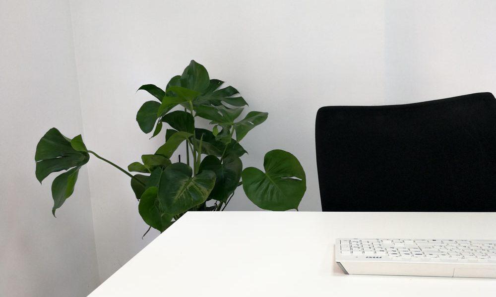 Oficina inmobiliaria
